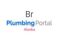 Bryan's Plumbing Maintenance