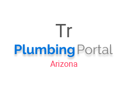 Travis & Sons Plumbing & Rooter Inc
