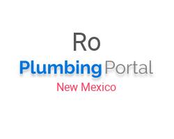 Rooter-Man in Albuquerque