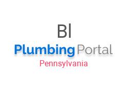 Blue Man Plumbing LLC in Morrisville